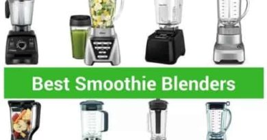 Best Smoothie Blender in India